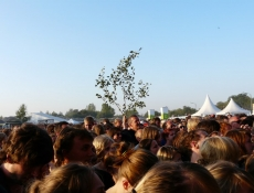 Publikum bei Element Of Crime