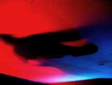 Tanzende Schatten