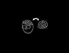 normanpalm-songs14.jpg