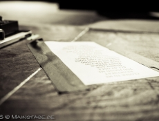 The Fray @ Huxley  |  Adina Scharfenberg