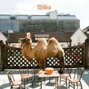 wilco_album-2009