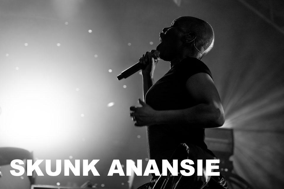 Banner Skunk Anansie